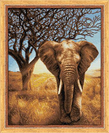 Malen nach Zahlen Bild Afrikanischer Elefant - AZ-1783 von Sonstiger Hersteller