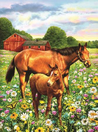 Malen nach Zahlen Bild Pferde auf der Wiese - PJS81 von Sonstiger Hersteller