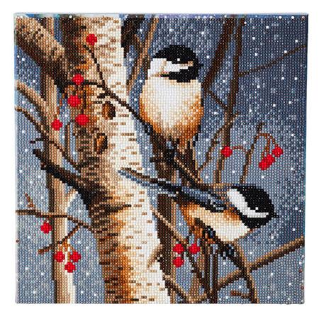 Vögel im Winter-Wald