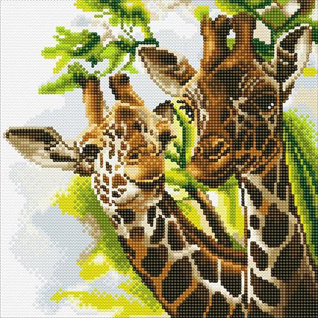 Malen nach Zahlen Bild Freundliche Giraffen - CAK-A86 von Sonstiger Hersteller