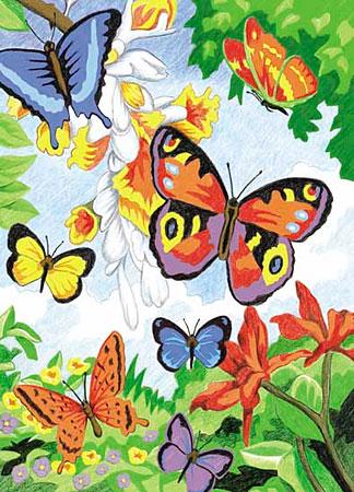 Malen nach Zahlen Bild Schmetterlinge - CPN2 von Sonstiger Hersteller