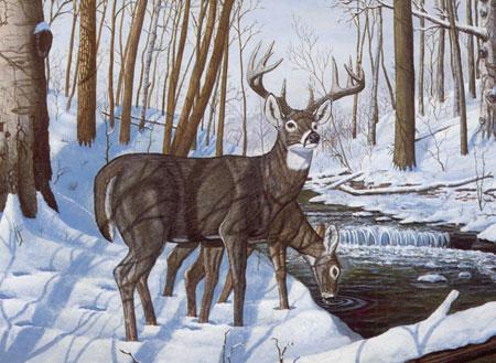 Hirsche im Winterwald