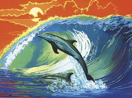 Malen nach Zahlen Bild Delphine - PCL6 von Sonstiger Hersteller