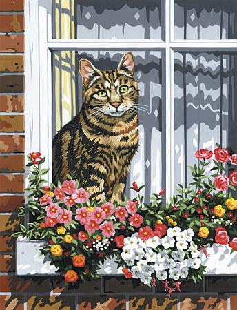 Malen nach Zahlen Bild Katze im Fensterbrett - PCS11 von Sonstiger Hersteller