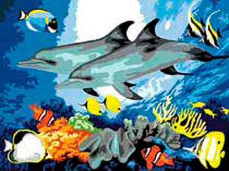 Malen nach Zahlen Bild Delphine - PJL10 von Sonstiger Hersteller