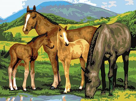 Malen nach Zahlen Bild Pferde beim Trinken - PJL13 von Sonstiger Hersteller