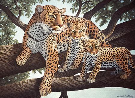 Leoparden im Baum