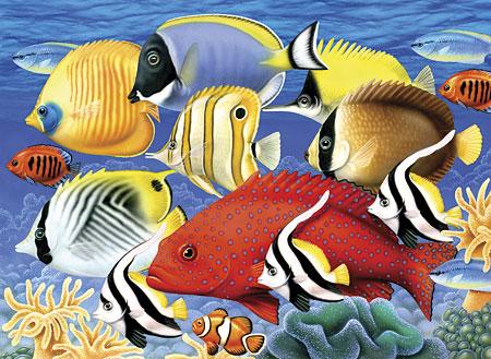 Salzwasserfische