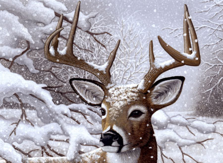 Malen nach Zahlen Bild Hirsch im Schnee - PJL35 von Sonstiger Hersteller