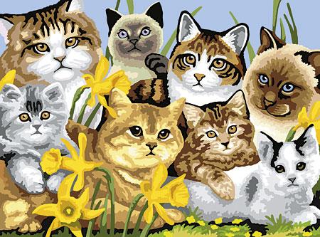 Malen nach Zahlen Bild Katzenmeute - PJL6 von Sonstiger Hersteller