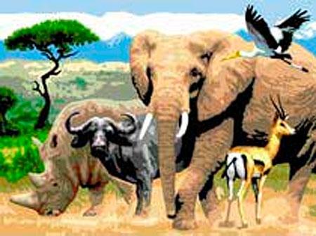 Malen nach Zahlen Bild Safari - PJL9 von Sonstiger Hersteller