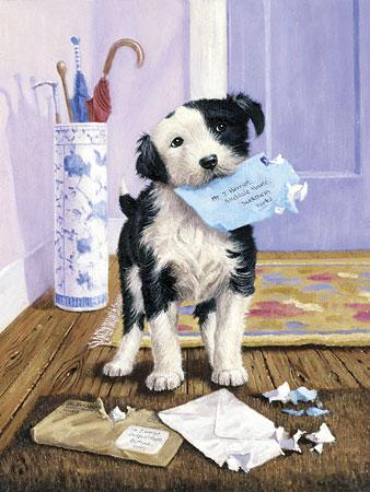Malen nach Zahlen Bild Hund zerreißt Brief - PJS44 von Sonstiger Hersteller
