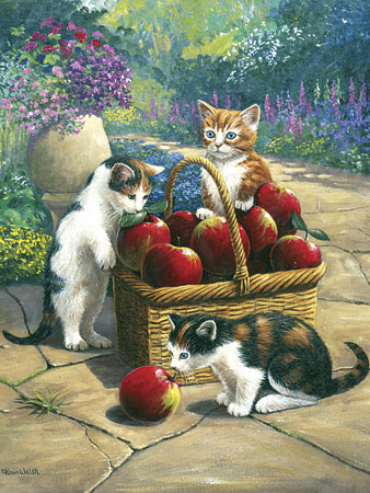 Katzen am Obstkorb