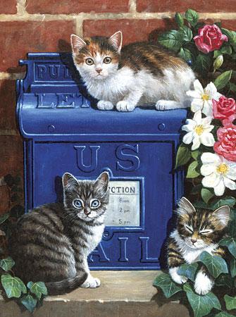 Malen nach Zahlen Bild Katzen - PJS59 von Sonstiger Hersteller