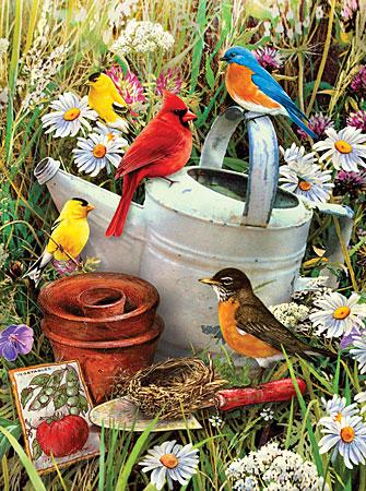 Malen nach Zahlen Bild Garten-Vögel - PJS71 von Sonstiger Hersteller