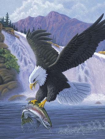 Adler beim Beutefang