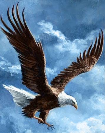 Eroberer des Himmels