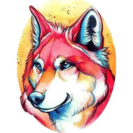 Malen nach Zahlen Bild Farbenfroher Husky - WD2376 von Sonstiger Hersteller