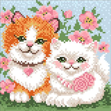 Malen nach Zahlen Bild Verliebte Kätzchen - WD2382 von Sonstiger Hersteller