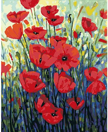 Rote Mohnblumen Von Sonstiger Hersteller 01art50400012 Kaufen Bei