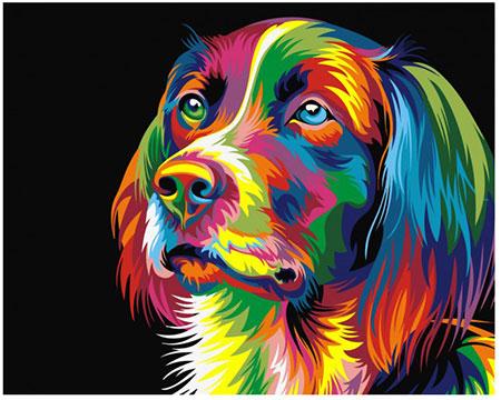 Regenbogenfarbener Hund