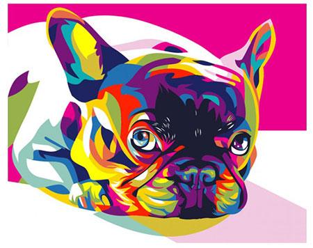 Regenbogenfarbene französische Bulldogge