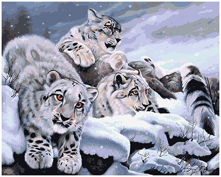 Panther im Winter