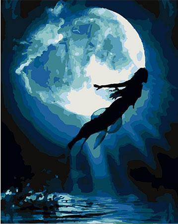 Malen nach Zahlen Bild Elfe im Mondlicht - 03ART50400248 von Sonstiger Hersteller