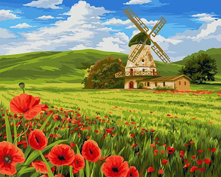 Mohnfeld mit Mühle