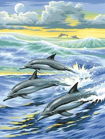 Malen nach Zahlen Bild Delfin-Familie - AZ-1062 von Sonstiger Hersteller