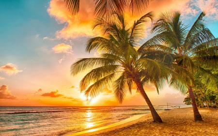 Malen nach Zahlen Bild Tropischer Sonnenuntergang - AZ-1063 von Sonstiger Hersteller