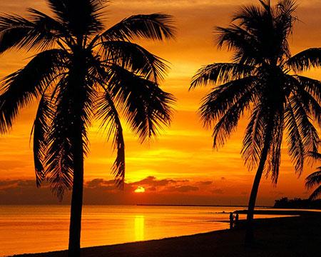Malen nach Zahlen Bild Sonnenuntergang auf der Insel - AZ-1090 von Sonstiger Hersteller