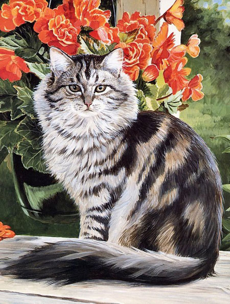 Malen nach Zahlen Bild Katze im Garten - AZ-1101 von Artibalta