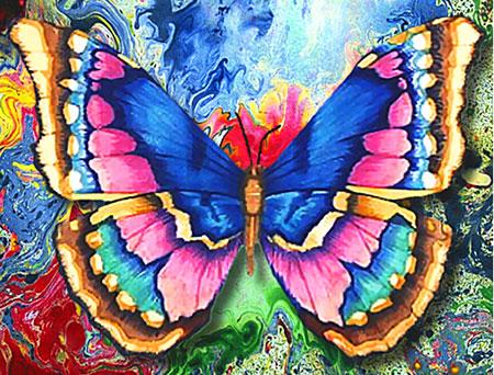 Malen nach Zahlen Bild Bunter Schmetterling - AZ-1130 von Sonstiger Hersteller