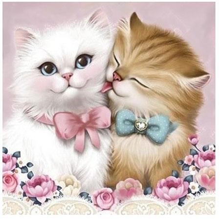 Malen nach Zahlen Bild Zwei niedliche Katzenkinder - AZ-1296 von Sonstiger Hersteller