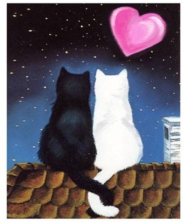 Malen nach Zahlen Bild Katzen Romanze - AZ-1297 von Sonstiger Hersteller