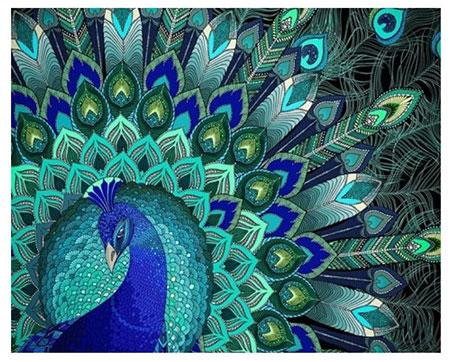 Malen nach Zahlen Bild Pfauen-Muster - AZ-1396 von Sonstige