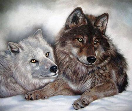 Malen nach Zahlen Bild Wolfskinder - AZ-1402 von Sonstige
