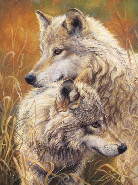 Malen nach Zahlen Bild Zärtliche Wölfe - AZ-1403 von Sonstiger Hersteller