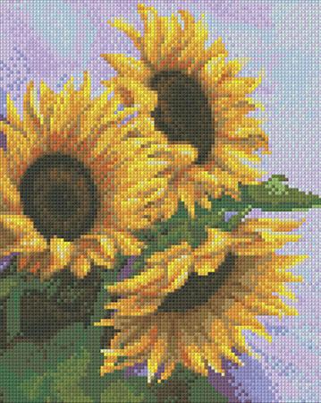 Drei Sonnenblumen