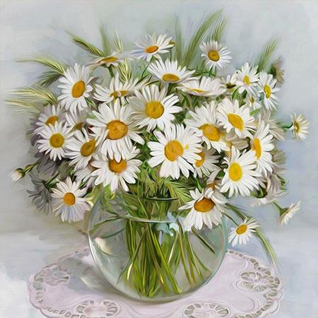 Kamillenpflanzen in der Vase