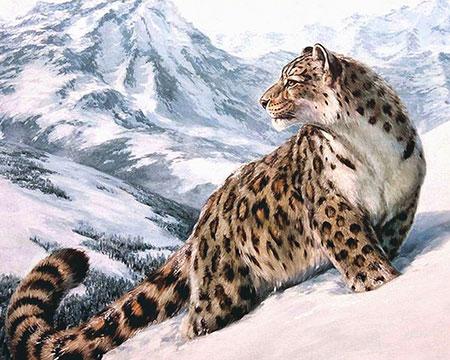 Malen nach Zahlen Bild Schneeleopard - AZ-1520 von Sonstiger Hersteller