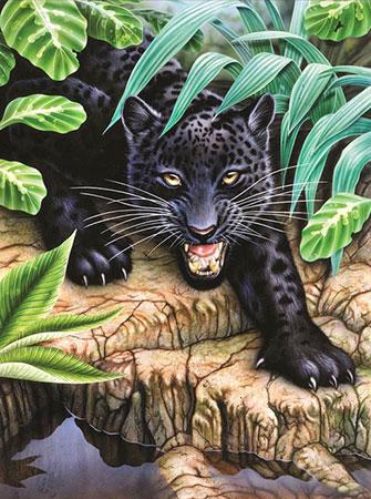 Malen nach Zahlen Bild Gefährlicher Panther - AZ-1522 von Sonstiger Hersteller