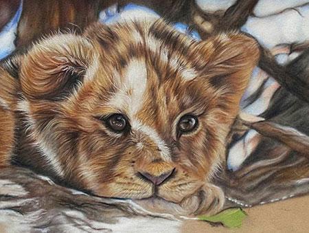 Malen nach Zahlen Bild Kleines Löwenkind - AZ-1524 von Sonstiger Hersteller