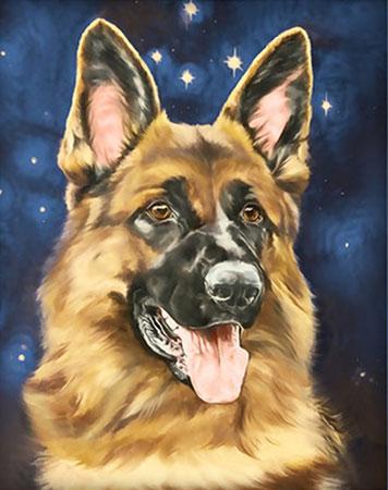 Malen nach Zahlen Bild Schäferhund-Porträt - AZ-1539 von Sonstiger Hersteller