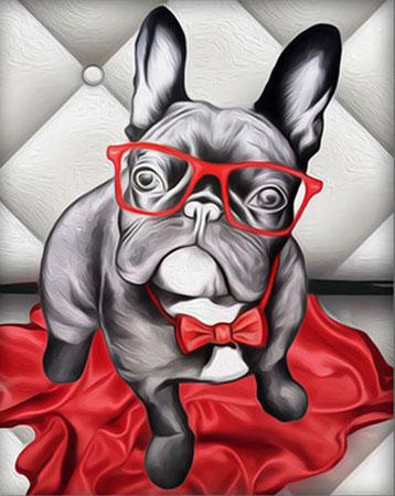 Malen nach Zahlen Bild Gestylte Bulldogge - AZ-1541 von Sonstiger Hersteller
