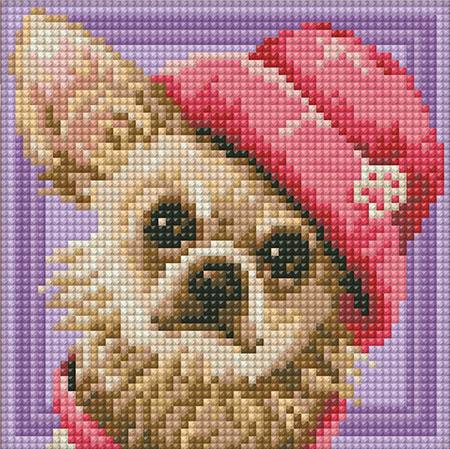 Chihuahua mit Hut