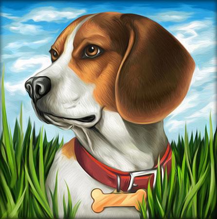 Malen nach Zahlen Bild Niedlicher Beagle - AZ-1608 von Artibalta
