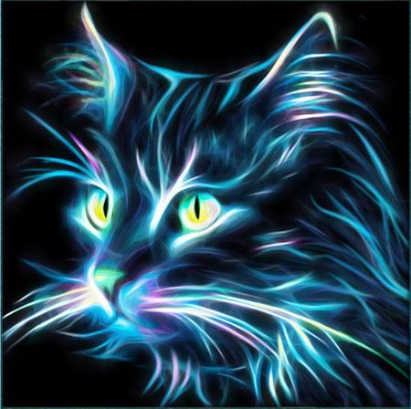 Malen nach Zahlen Bild Neon Katze - AZ-1709 von Sonstiger Hersteller