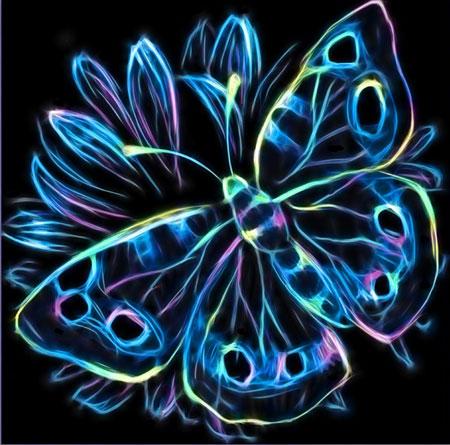 Malen nach Zahlen Bild Neon Schmetterling - AZ-1713 von Sonstiger Hersteller
